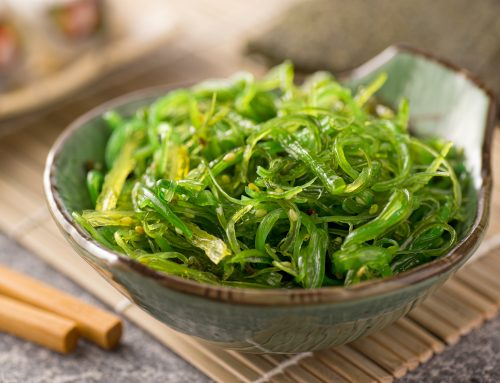 This Seaweed Extract Is a Powerful Brain-Booster