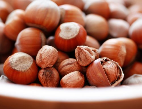 The Tree Nut that Keeps Dementia at Bay