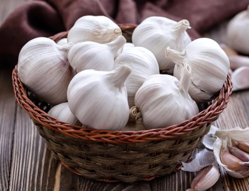 "Garlic May be the New ""Must-Have"" for the Brain"