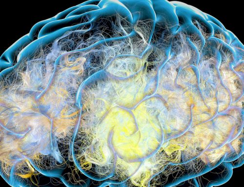 A New Clue about Alzheimer's Points Toward a Revolution in Treatment